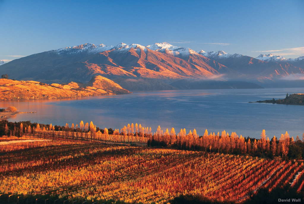 lake wanaka new zealand travel